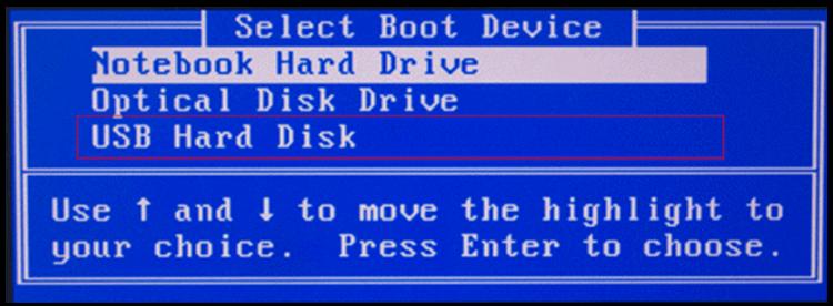 bios usb hard disk