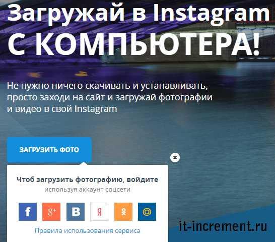 instagram foto online