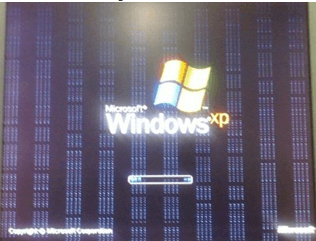 polosa ekrana windows xp